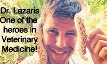 Dr. Lazaris- One of the heroes in Veterinary Medicine!