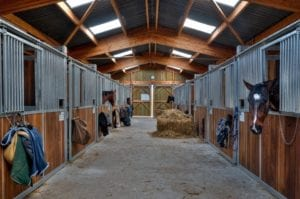 Horse stable hay box