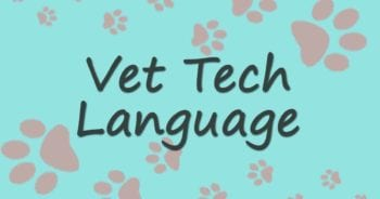 Vet Tech Language