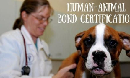 Human-Animal Bond Certification