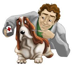 medicine to dog veterinary