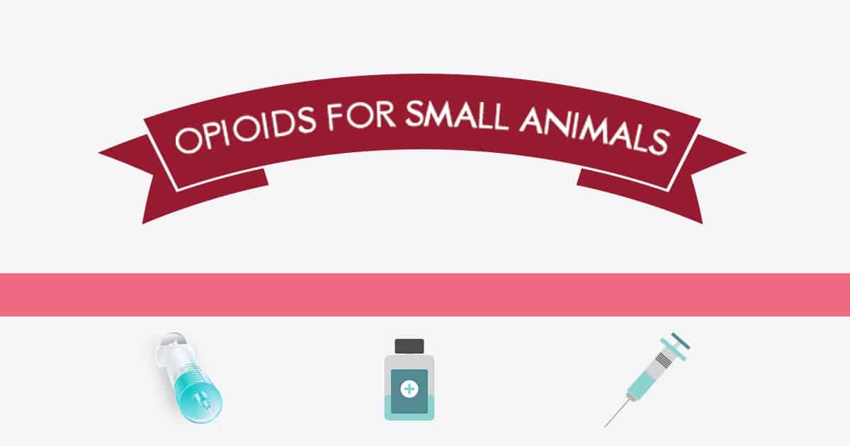 Opioids for small animals