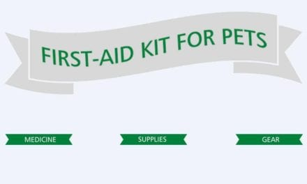 First-Aid kit for pets