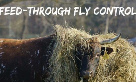 Feed-through fly control