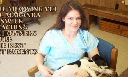 The Meowing Vet – Dr. Maranda Elswick – Teaching Pet Owners to be the Best Pet Parents!