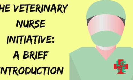 The Veterinary Nurse Initiative: A Brief Introduction