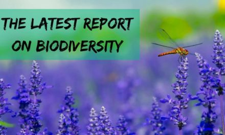 The latest report on biodiversity