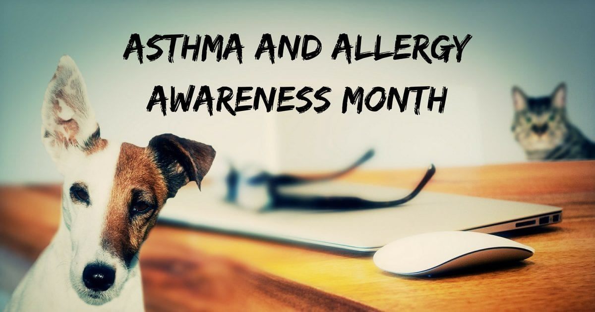 Asthma and Allergy Awareness Month – May 2018