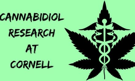 Cannabidiol research at Cornell