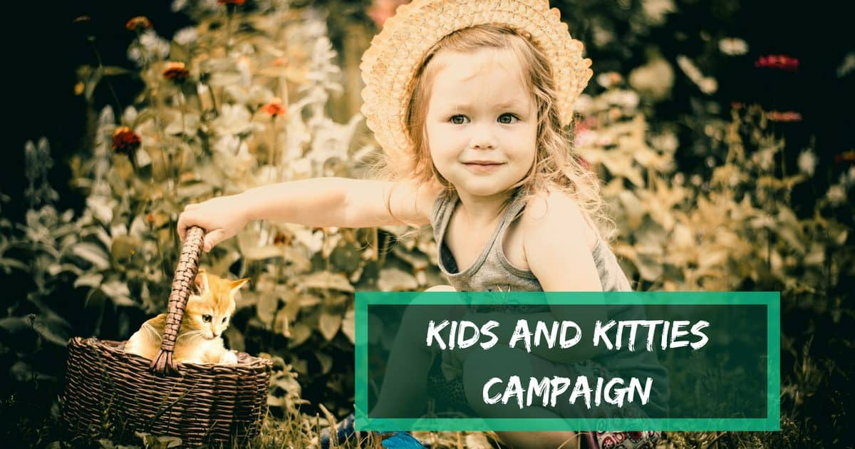 Kids and Kitties Campaign