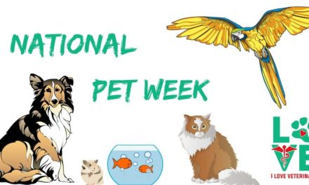 Celebrate National Pet Week
