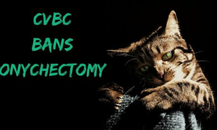CVBC Bans Onychectomy
