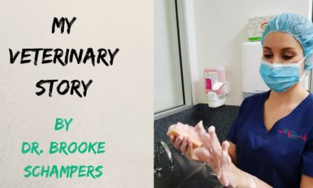 My Veterinary Story – by Dr. Brooke Schampers