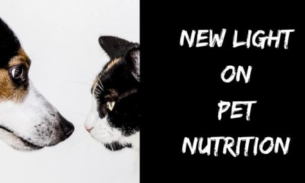 New light on pet nutrition