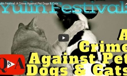 Yulin Festival: A Crime Against Pet Dogs & Cats – Video by Dr. Evan Antin