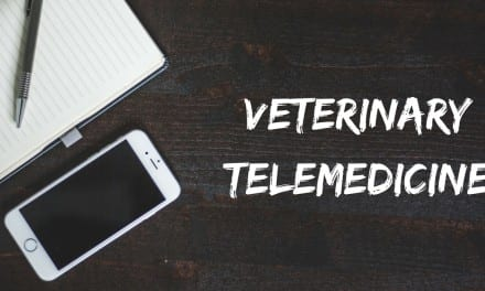 Veterinary Telemedicine
