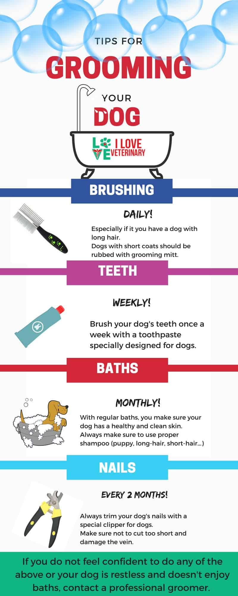 grooming your dog infographic