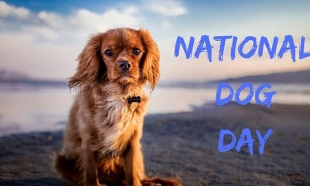 National Dog Day – August 26th