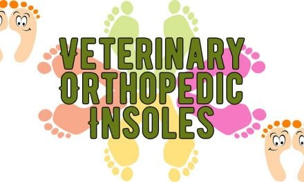 Veterinary Orthopedic Insoles