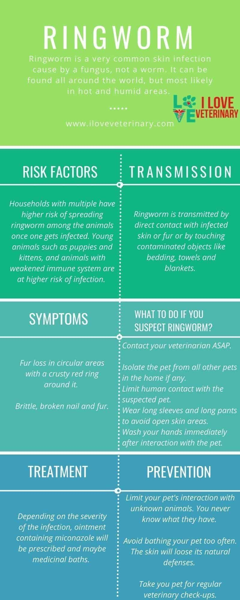 ringworm infection, dermatophytosis, pets