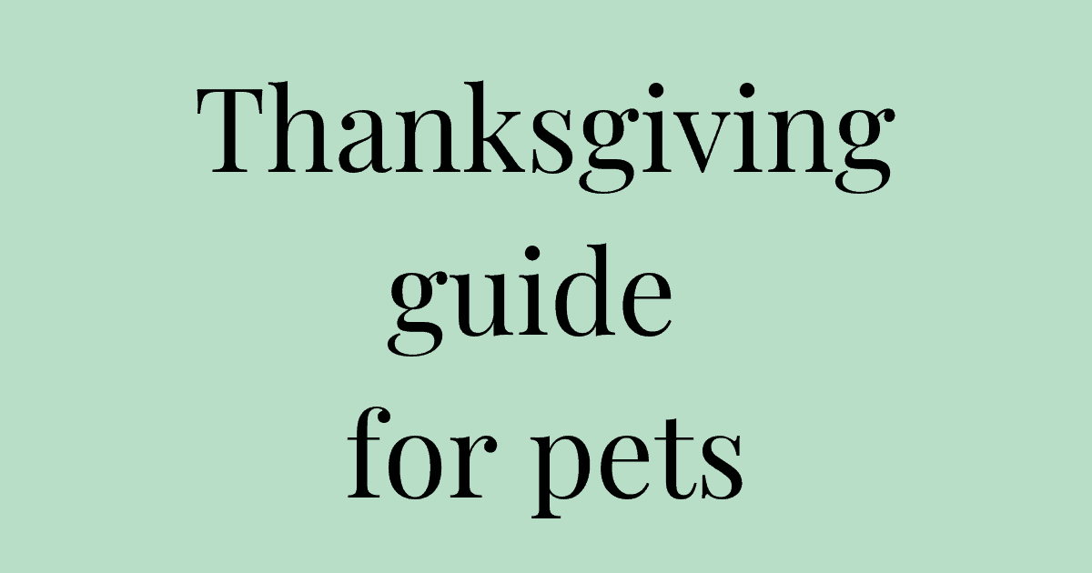 Thanksgiving guide for pets