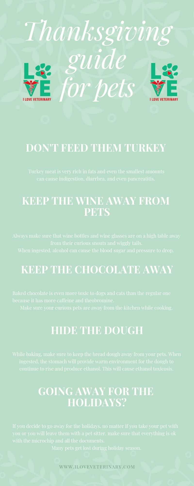 holiday, thanksgiving, pets, Thanksgiving guide for pets
