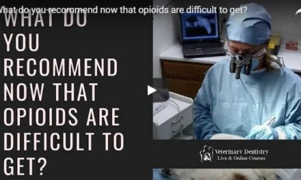 Recommended opioids for dental works – Video by Dr. Brett Beckman