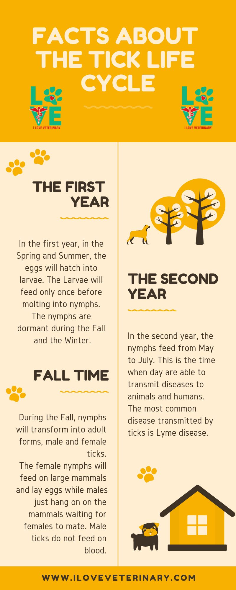Facts about the tick life cycle