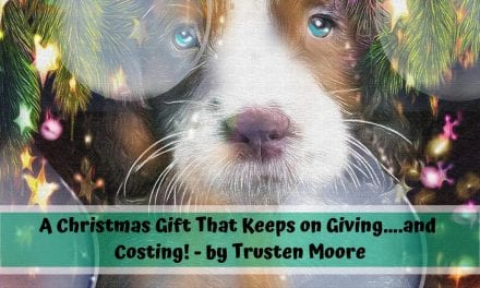 A Christmas Gift That Keeps on Giving….and Costing! – by Trusten Moore