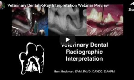 Veterinary Dental X-Rays – Video by Dr. Brett Beckman