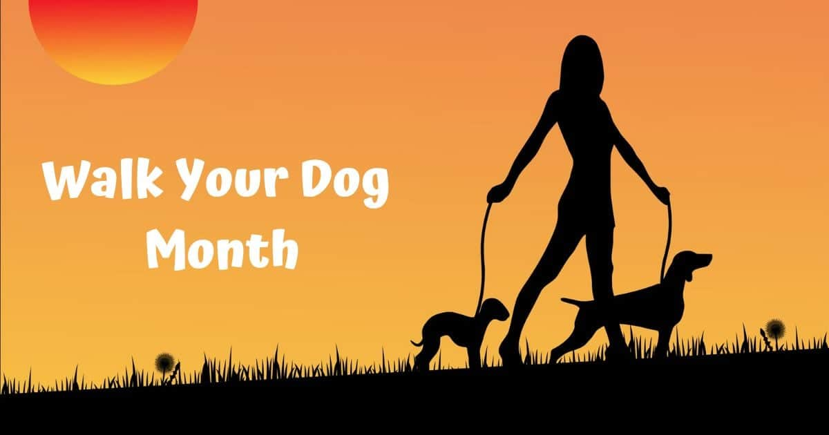 Walk Your Dog Month – January