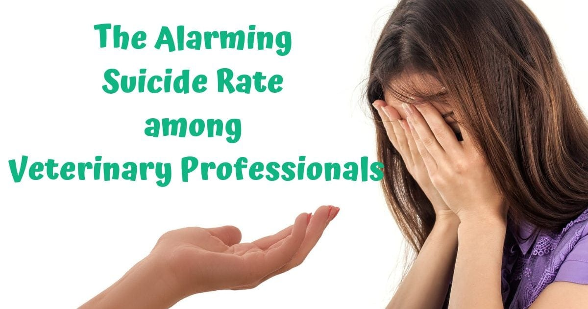 The Alarming Suicide Rate among Veterinary Professionals