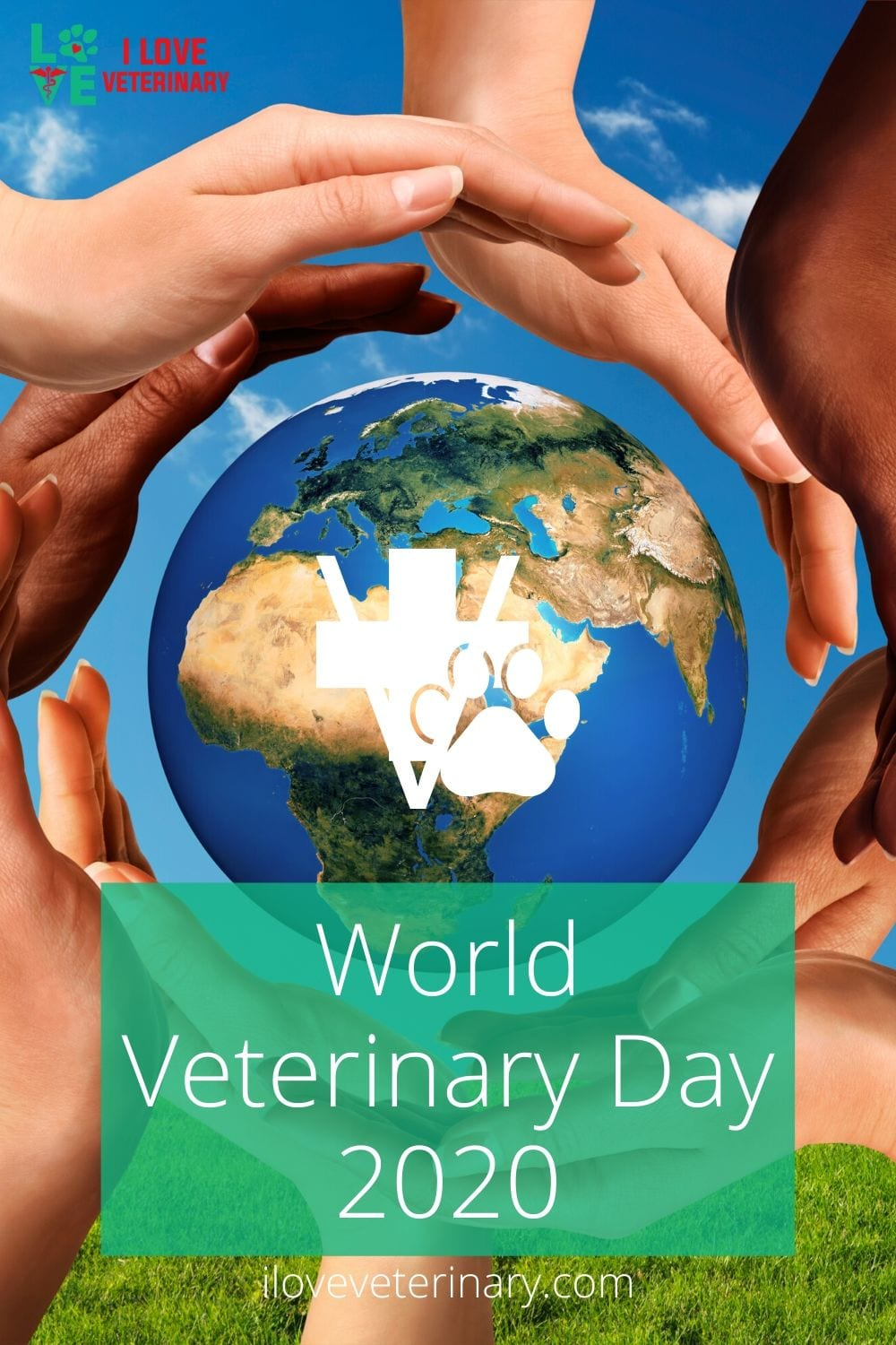 world veterinary day 2020 pinterest pin I Love Veterinary