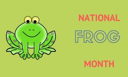National Frog Month – April 2019