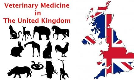 Veterinary Medicine in the United Kingdom