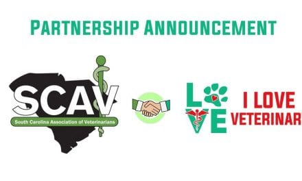 SCAV and ILVM Partnership Announcement