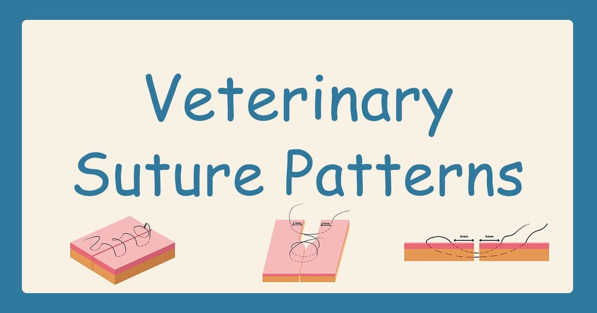 Veterinary Suture Patterns