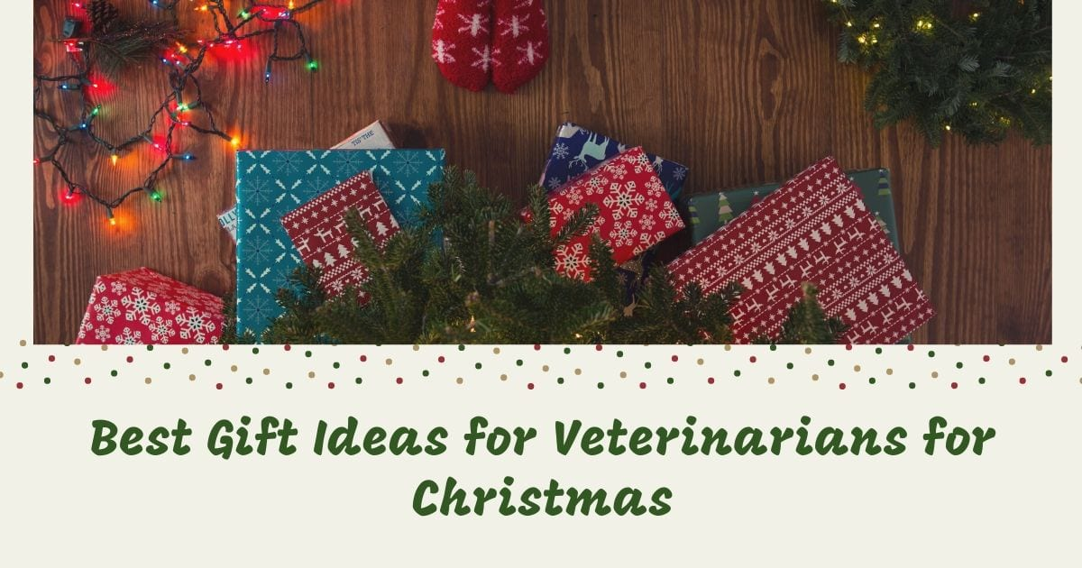 Best Gift Ideas for Veterinarians for Christmas