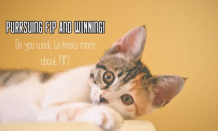Purrsuing FIP and WINNing!