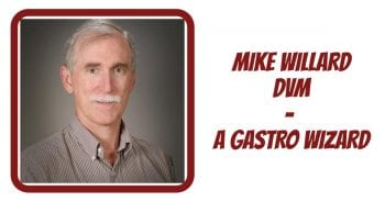 Dr Mike Willard – A Gastro Wizard!