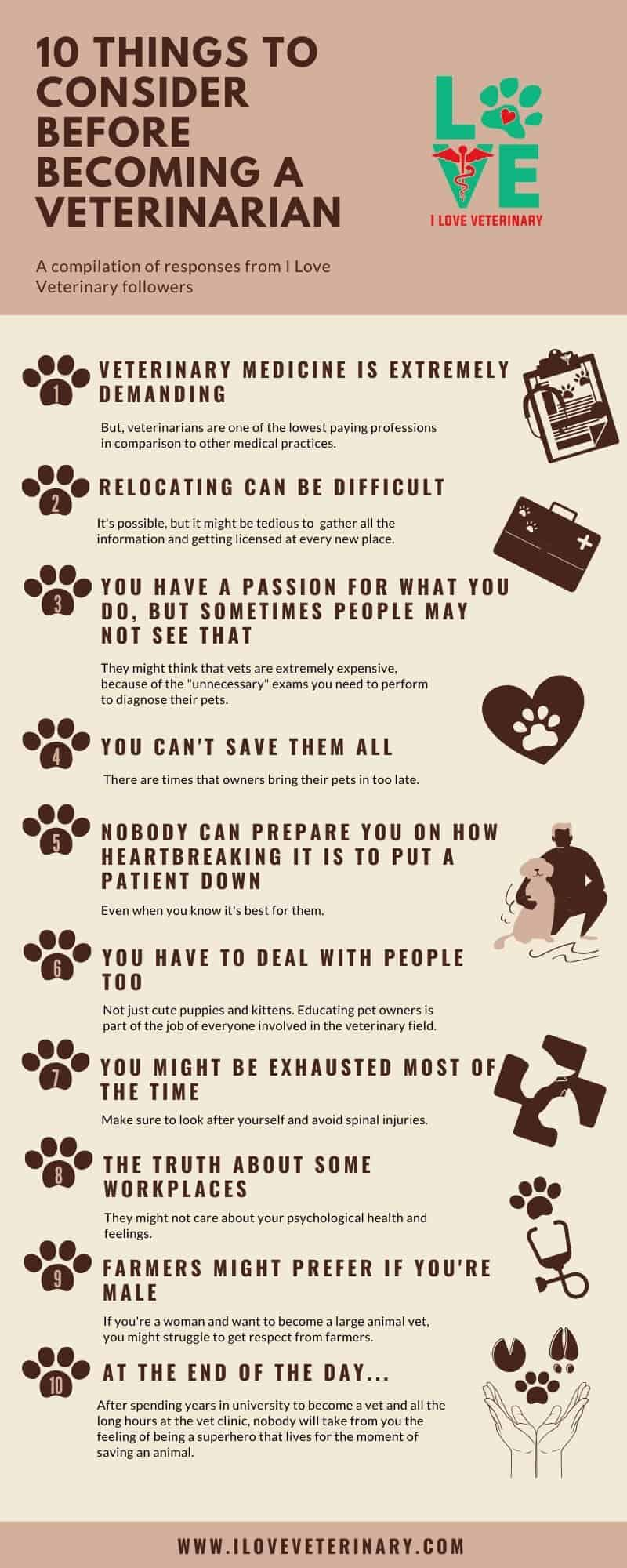 10 Things to consider before becoming a veterinarian I Love Veterinary