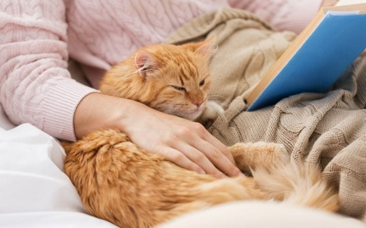 Cat with owner and a book I love veterinary