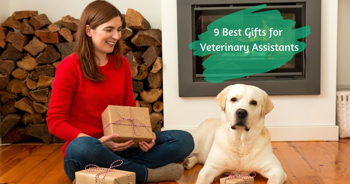 9 Best Gifts for Veterinary Assistants