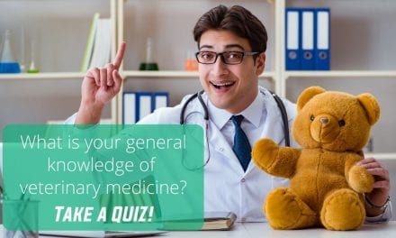 What is your general knowledge of veterinary medicine?