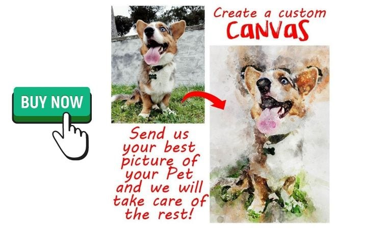 custom canvas from a photo of your pet by I Love Veterinary