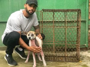 Aman Kanwar with dog saved from slaughterhouse in China - I Love Veterinary