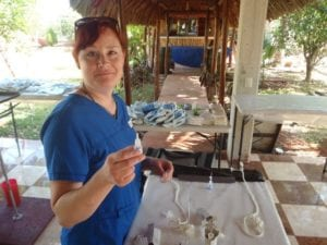 Interview With Abbie Deleers, Vet Techs Without Borders - I Love Veterinary