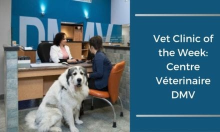 Vet Clinic of the Week: Centre Véterinaire DMV